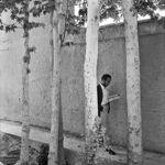 PAR232556 - شهروندِ جهان (عباس عطار ۱۳۲۳-۱۳۹۷) - مگنوم, عکس اجتماعی, عباس عطار, شهروند جهان
